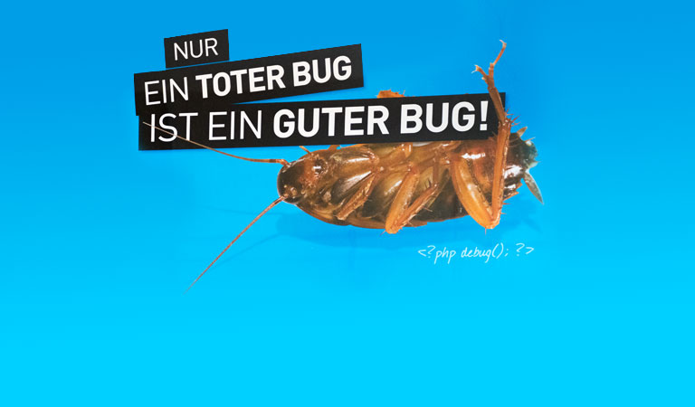 software individualisierung